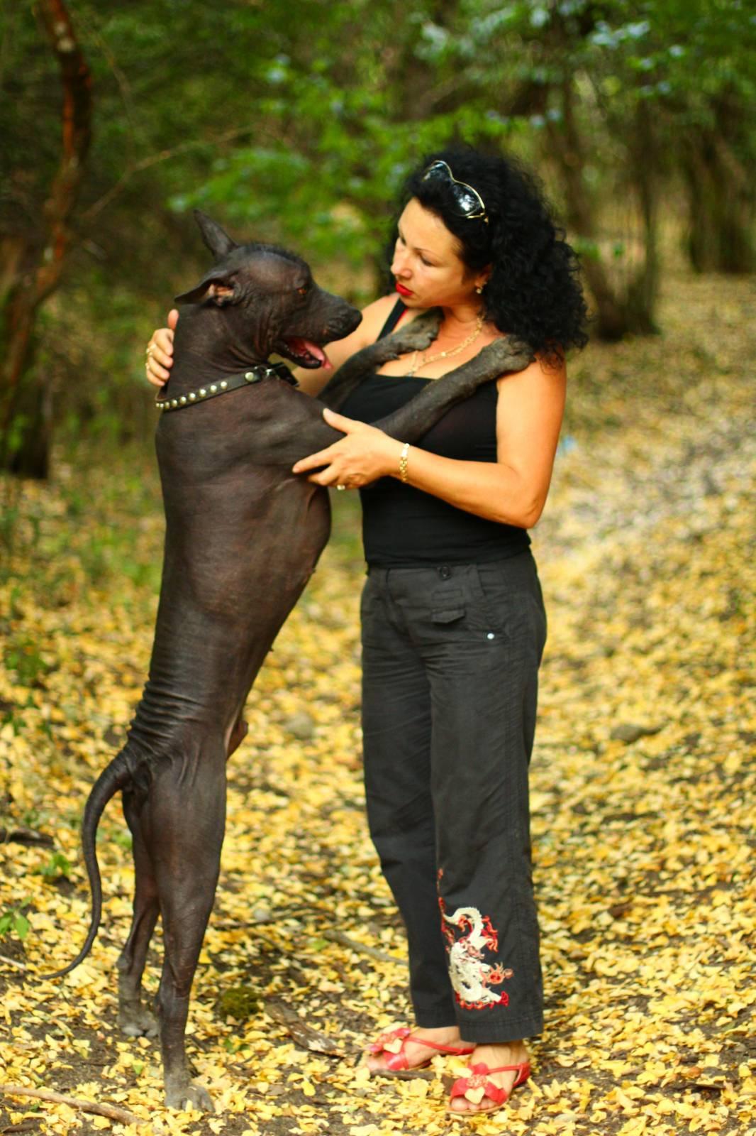 Cекс с конем Зоофилия!  зоофилия с домашними животными